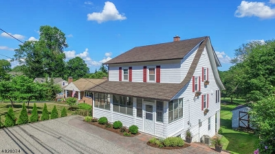 Morris Twp. Single Family Home For Sale: 178 Mount Kemble Ave
