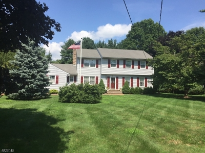 Morris Twp. Single Family Home For Sale: 141 Lake Rd