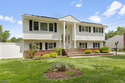 Parsippany-Troy Hills Twp. Single Family Home For Sale: 1004 Vail Rd