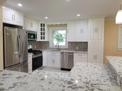 Parsippany-Troy Hills Twp. Single Family Home For Sale: 21 Rockaway Pl