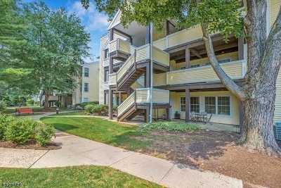 Union Twp. Condo/Townhouse For Sale: 422 Tournament Dr #6
