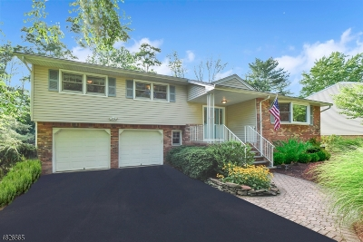 Parsippany-Troy Hills Twp. Single Family Home For Sale: 3 Holly Dr