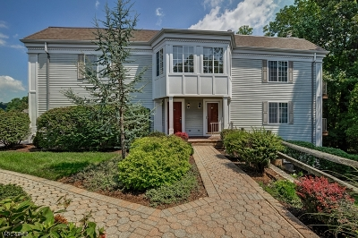 Chatham Twp. Condo/Townhouse For Sale: 153 Riveredge Dr