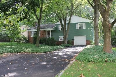 Morris Twp. Single Family Home For Sale: 14 Symor Dr