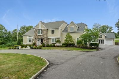 Florham Park Boro Single Family Home For Sale: 73 E Madison Ave