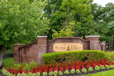 Morristown Town Condo/Townhouse For Sale: 33 Taft Ln