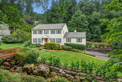 Morris Twp. Single Family Home For Sale: 19 Colonel Evans Drive