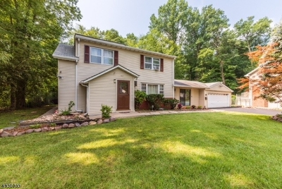 Parsippany-Troy Hills Twp. Single Family Home For Sale: 159 Jacksonville Dr