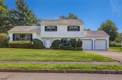 Livingston Twp. Single Family Home For Sale: 10 Page Pl