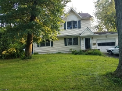 Mountainside Boro Single Family Home For Sale: 161 New Providence Rd