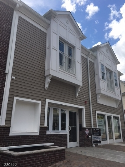 Union County Rental For Rent: 206 Centennial #1