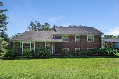 Mountainside Boro Single Family Home For Sale: 390 Creek Bed Rd