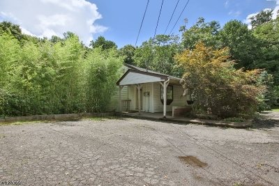 Randolph Twp. Single Family Home For Sale: 1228 Sussex Tpke