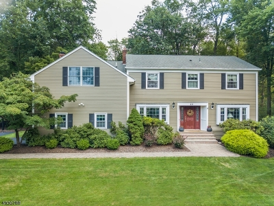 Randolph Twp. Single Family Home For Sale: 20 Meadow Brook Rd