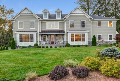 Chatham Twp. Single Family Home For Sale: 8 Parkview Rd