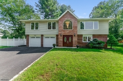 East Hanover Twp. Single Family Home For Sale: 24 Phyldan Rd
