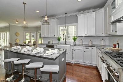 Mountainside Boro Single Family Home For Sale: 1254 Virginia Ave
