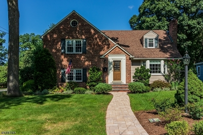 Scotch Plains Twp. Single Family Home For Sale: 18 Homestead Ter