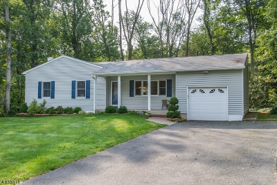 Randolph Twp. Single Family Home For Sale: 3 John Ct