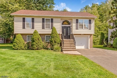 Hanover Twp. Single Family Home For Sale: 54 Reynolds Ave