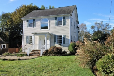 Randolph Twp. Single Family Home For Sale: 20 Birchwood Rd