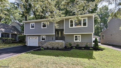 Springfield Twp. NJ Single Family Home For Sale: $599,000 (Renovated)