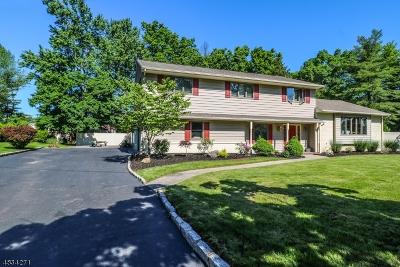 Edison Twp. Single Family Home For Sale: 14 Renee Ct