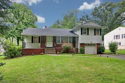 New Providence Boro Single Family Home For Sale: 8 Sherwood Dr
