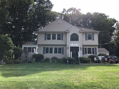 Parsippany-Troy Hills Twp. Single Family Home For Sale: 98 Fieldcrest Rd