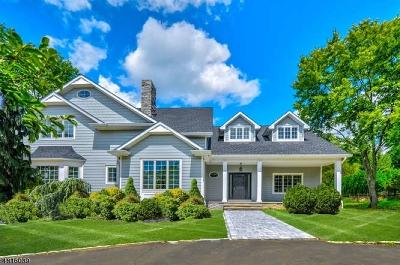 Livingston Twp. Single Family Home For Sale: 3 Morningside Dr