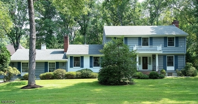 WATCHUNG Single Family Home For Sale: 25 Ellisen Rd