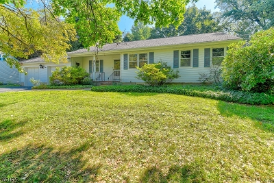 Morris Plains Boro Single Family Home For Sale: 8 Valley Stream Dr