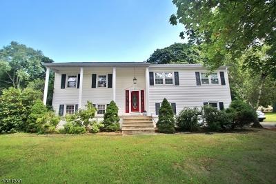 Randolph Twp. Single Family Home For Sale: 4 Arrow Pl