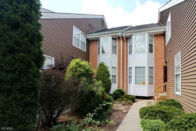 West Orange Twp. Condo/Townhouse For Sale: 316 Araneo Dr