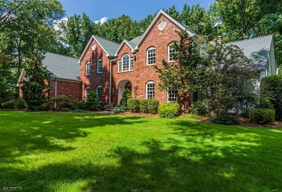 Scotch Plains Twp. Single Family Home Active Under Contract: 1270 Lenape Way