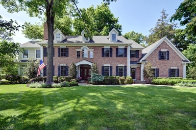 Morris Twp. Single Family Home For Sale: 11 Canfield Rd