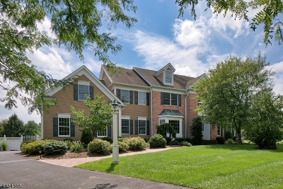 Peapack Gladstone Boro Single Family Home For Sale: 7 Meadowview Rd