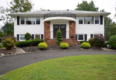 Springfield Twp. Single Family Home For Sale: 2 Willow Ct