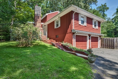 Mountainside Boro Single Family Home For Sale: 1400 Deer Path