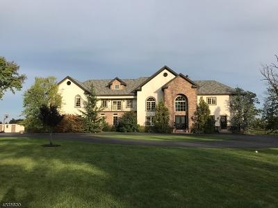 West Orange Twp. Single Family Home For Sale: 38 Eagle Ridge Way