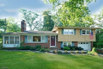 WARREN Single Family Home For Sale: 49 Morning Glory Rd