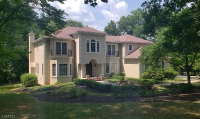 WARREN Single Family Home For Sale: 15 Old Dutch Road