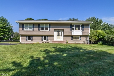 Randolph Twp. Single Family Home For Sale: 671 Millbrook Ave
