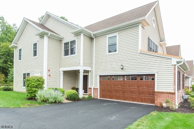Morris Twp. Condo/Townhouse For Sale: 9 Whitney Farm Pl