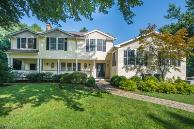 Chatham Twp. Single Family Home For Sale: 58 Rolling Hill Dr
