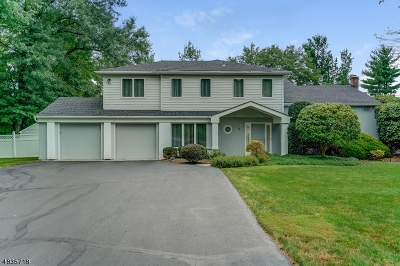 Livingston Twp. Single Family Home For Sale: 6 Stoneham Dr