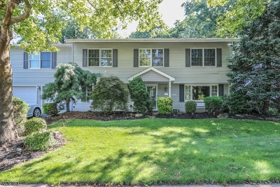 Edison Twp. Single Family Home For Sale: 52 Harmon Rd