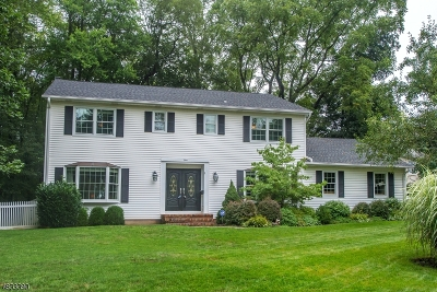Florham Park Boro Single Family Home For Sale: 4 Thayer Ct