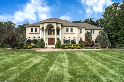Randolph Twp. Single Family Home For Sale: 11 Shadowbrook Way