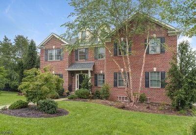 West Orange Twp. Single Family Home For Sale: 1 Efstis Ct